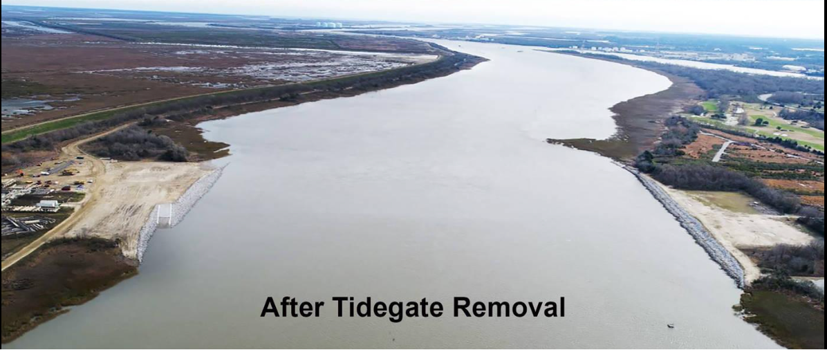 Savannah Harbor Tide Gate Removal - Afte