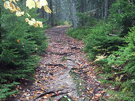 New life for old trails