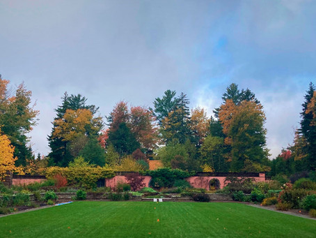 Views beyond the gardens:  how we manage the vistas