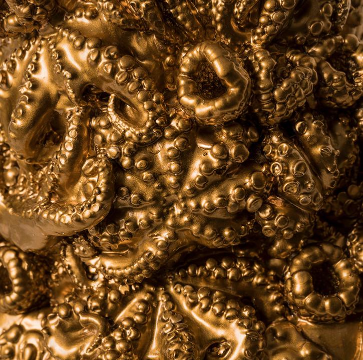 Octopie detail