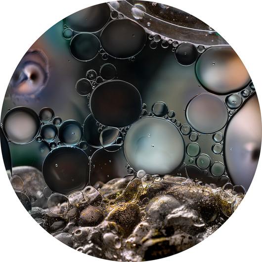 Seedless#2_40x40cm_ChromaLuxe.jpg