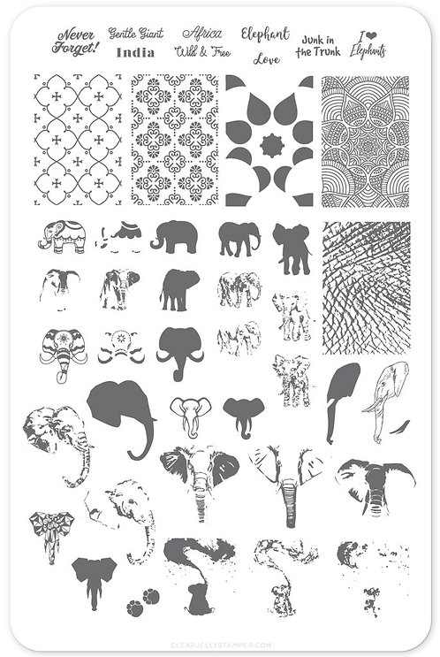 Everything Elephant (CjS LC-44)