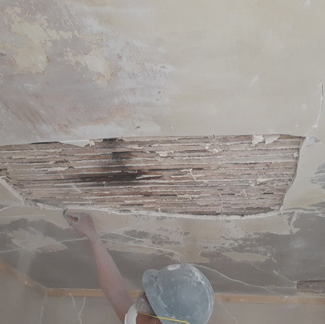 Before at Historical Heck Andrews House Plaster Re