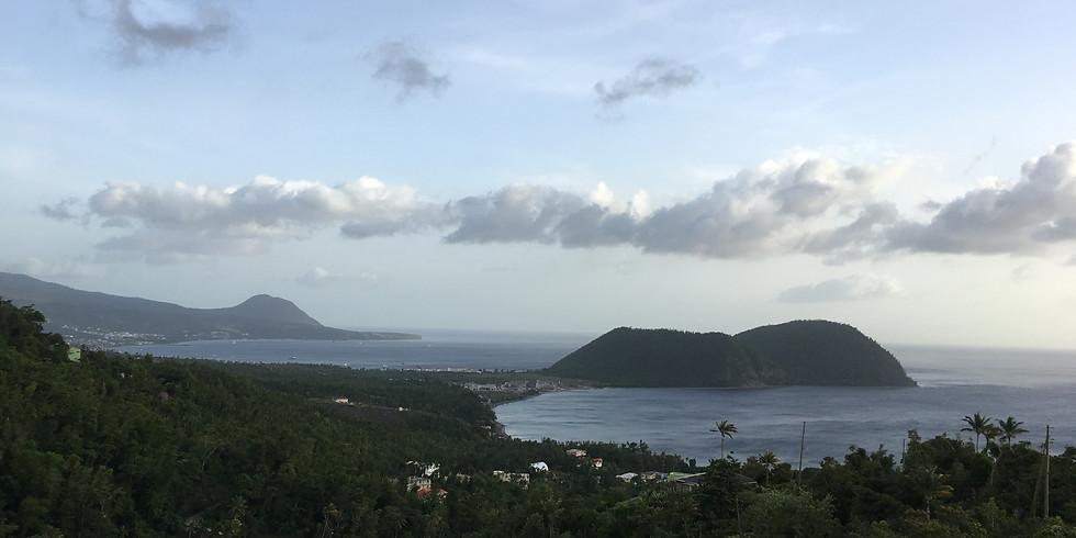 JANZU® DOMINICA (Island)