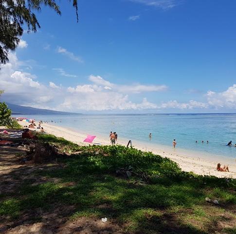 Janzu training in Reunion
