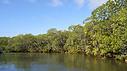 L'Office français de la biodiversité lance le 1er appel à projets Biodiv'éco