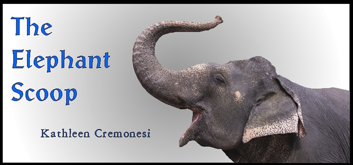 elephant scoop image.png
