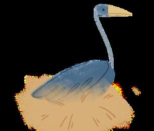 update_bird.png