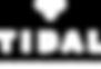Tidal brand logo