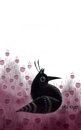 Ptakkat (A4)