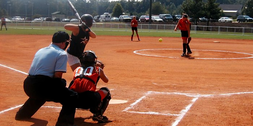 FastPitch Training Clinic