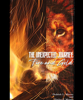 FIre and Gold Hardcover front.jpg