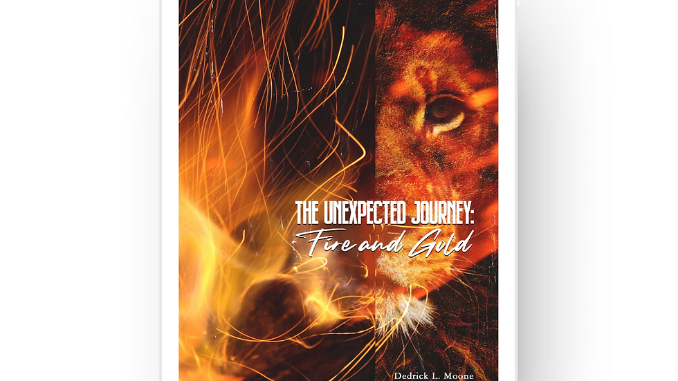 The Unexpected Journey: Fire and Gold E-Book