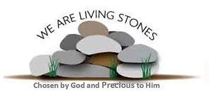 Living stones.JPG