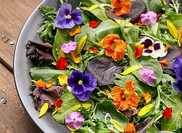 edible-flowers-lead.jpeg