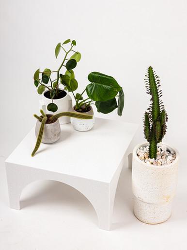 Arcus Coffee Table