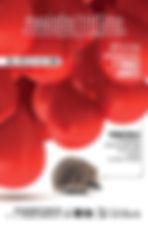 Affiche Mario preprog-001.jpg