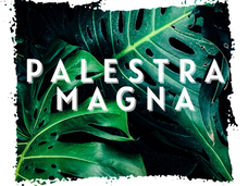 #PALESTRA MAGNA