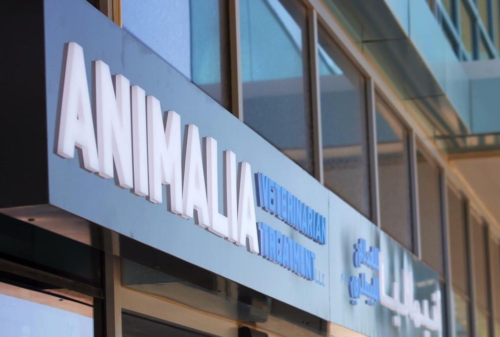 Animalia clinic front