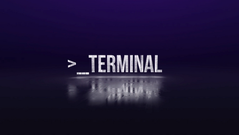 >_TERMINAL -  Digital Spot