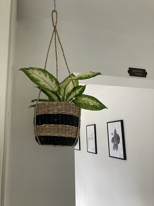 Sea grass hanging planter