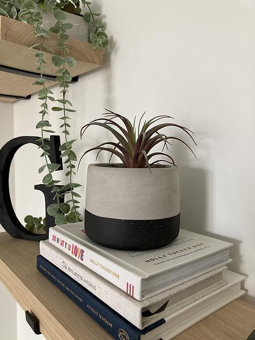Faux Succulent in planter