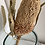 Thumbnail: Dried Banksia Prionote - one stem