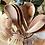 Thumbnail: Eco dish brush