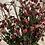 Thumbnail: Faux Rosehip branch x2