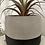 Thumbnail: Faux Succulent in planter