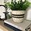 Thumbnail: Black and White planter