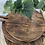 Thumbnail: Circular wooden chopping/serving board