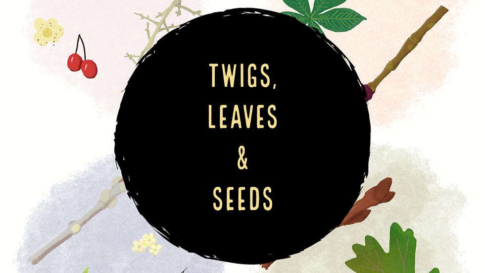 Twigs, Leaves & Seeds