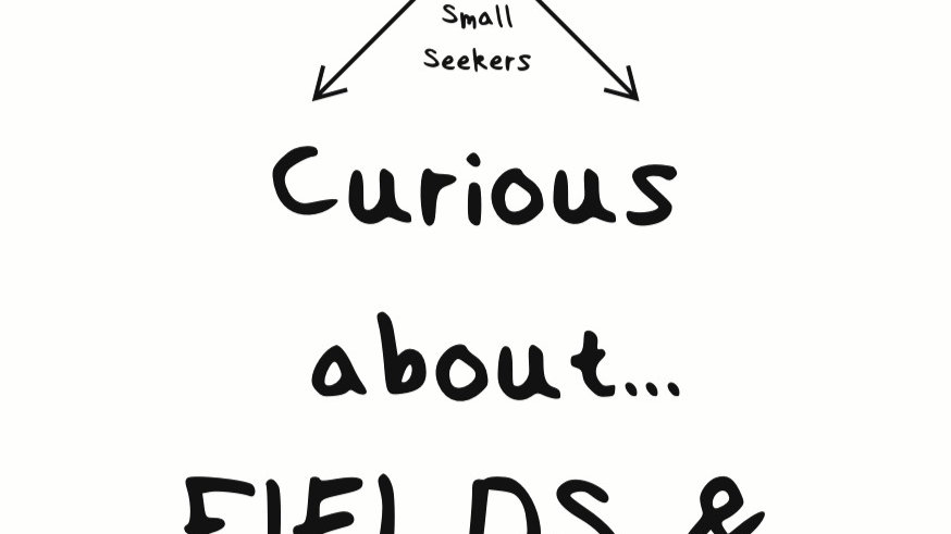 Curious about Fields & Forests - Pocket Pack