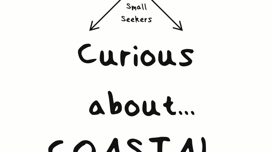 Curious about Coastal life -  Pocket Pack
