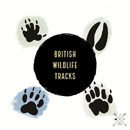 British Wildlife Footprints
