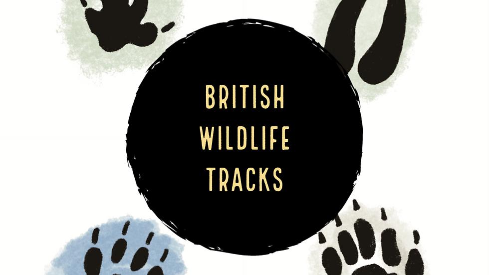 British Wildlife Footprints (Digital)