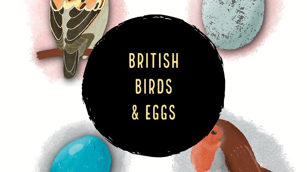 British Garden Birds & Eggs (Digital)