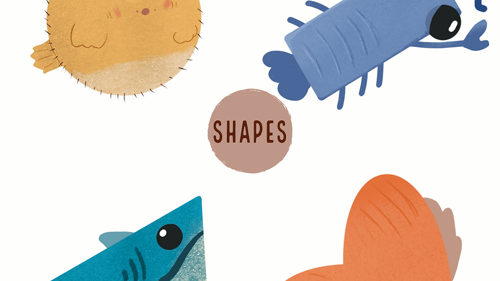 Shapes (2D)