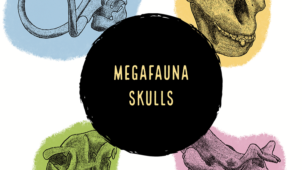 Megafauna Skulls (Digital)