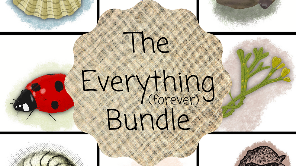The Everything Forever Digital Bundle