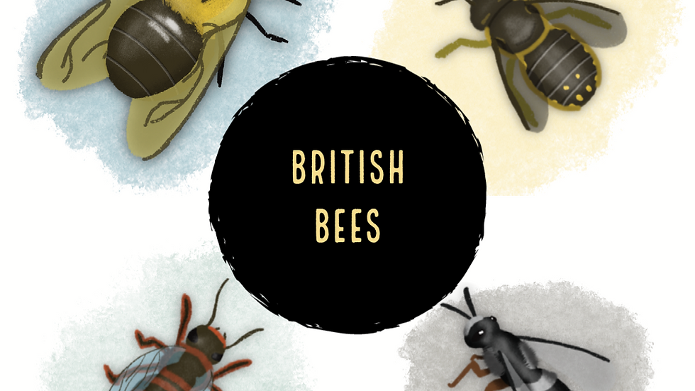 British Bees (Digital)