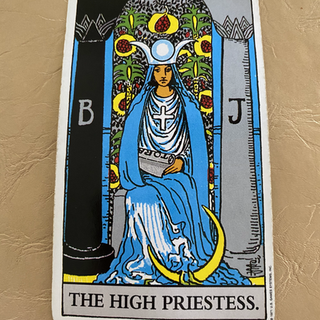 THE HIGH PRIESTESS was at a party and you got to meet her...briefly.