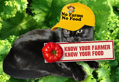 no.farms-no.food.png