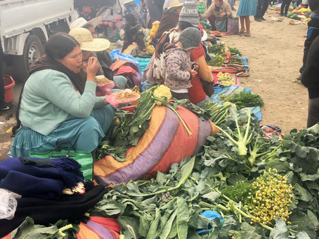 Thriving Health in Bolivia