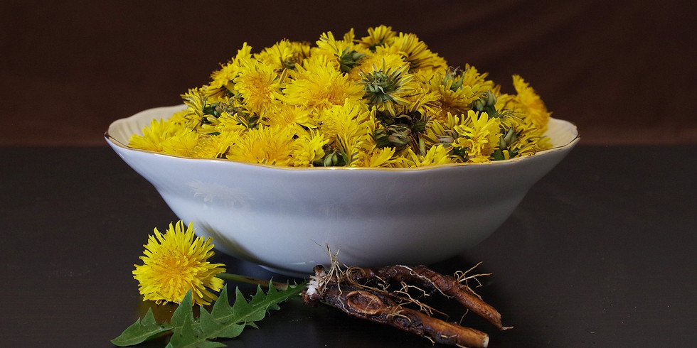 Supporting Your Immune System with Herbalism and Nutrition