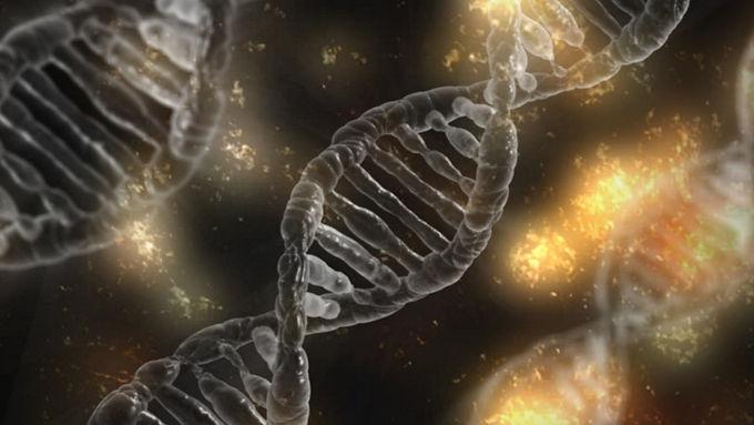 A Case for Conviction and Hope: Epigenetics Part 1
