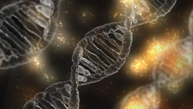 A Case for Conviction and Hope: Epigenetics Part 1