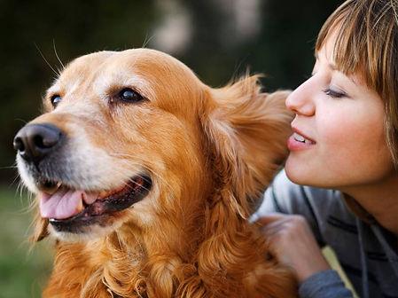 Marin-County-Dog-Trainer.jpg