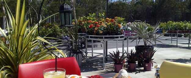 Hoya Garden Centre Brisbane Redlands Capalaba Nursery Cafe